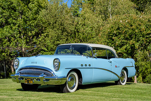 AUT 21 BK0133 01 © Kimball Stock 1954 Buick Special Blue 3/4 Front View Tree Grass
