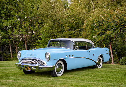 AUT 21 BK0134 01 © Kimball Stock 1954 Buick Special Blue 3/4 Front View Tree Grass