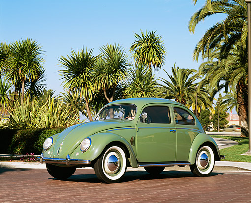AUT 21 RK1205 04 © Kimball Stock 1952 VW Bug Split Window Green 3/4 Front View On Pavement By Palm Trees Blue Sky
