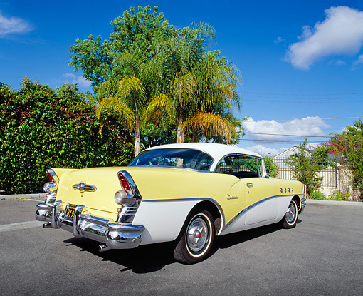 AUT 21 RK1718 04 © Kimball Stock 1955 Buick Century Yellow And White 3/4 Rear View On Pavement By Trees