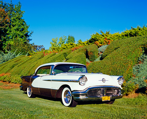 AUT 21 RK1921 01 © Kimball Stock 1956 Oldsmobile Holiday 98 Gold And White 3/4 Front View On Grass By Bushes