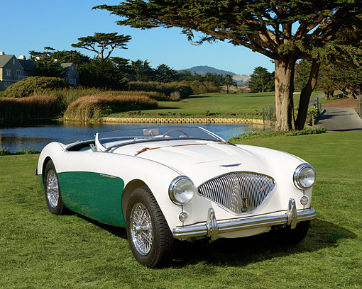 AUT 21 RK1996 01 © Kimball Stock 1956 Austin-Healey Convertible White And Green 3/4 Front View On Grass By Pond