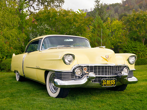AUT 21 RK2121 01 © Kimball Stock 1954 Cadillac Coupe de Ville Yellow Front 3/4 View Low Angle On Grass By Trees