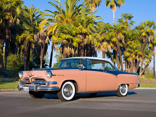 AUT 21 RK2514 01 © Kimball Stock 1955 Dodge Royal Lancer Pink 3/4 Front View On Pavement By Palm Trees
