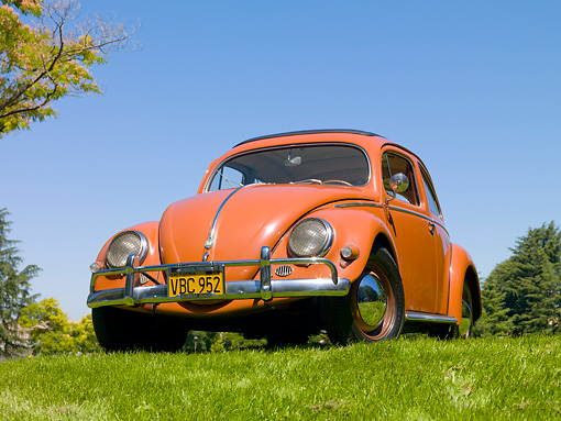 AUT 21 RK2804 01 © Kimball Stock 1956 Volkswagen Beetle Coral Red 3/4 Front View On Grass