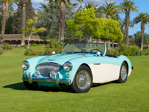 AUT 21 RK2869 01 © Kimball Stock 1956 Austin-Healey 100M Roadster Green And White 3/4 Front View On Grass By Trees