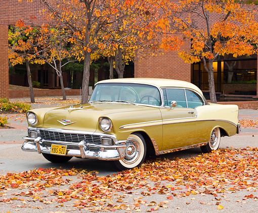 AUT 21 RK2896 01 © Kimball Stock 1956 Chevrolet Bel Air Gold And Yellow 3/4 Front View On Pavement By Brick Building And Autumn Leaves