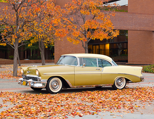 AUT 21 RK2898 01 © Kimball Stock 1956 Chevrolet Bel Air Gold And Yellow 3/4 Side View On Pavement By Brick Building And Autumn Leaves
