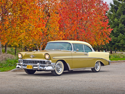 AUT 21 RK2899 01 © Kimball Stock 1956 Chevrolet Bel Air Gold And Yellow 3/4 Front View On Pavement By Autumn Trees