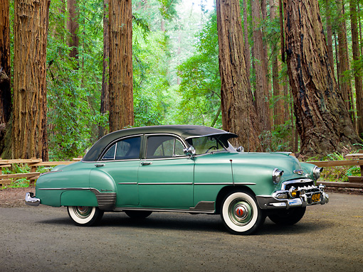 AUT 21 RK3024 01 © Kimball Stock 1952 Chevrolet Styleline Green 3/4 Side View On Pavement By Redwood Trees