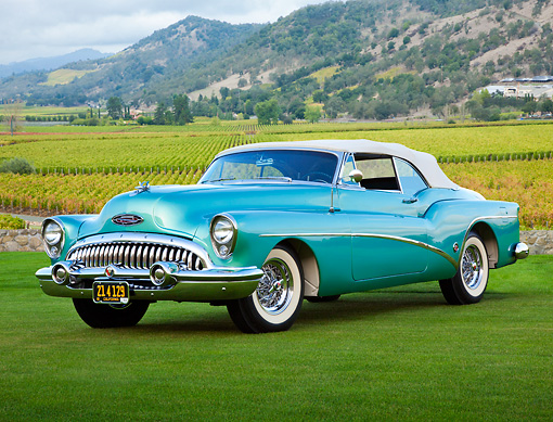 AUT 21 RK3129 01 © Kimball Stock 1953 Buick 76X Skylark Pinehurst Green 3/4 Front View On Grass By Vineyard