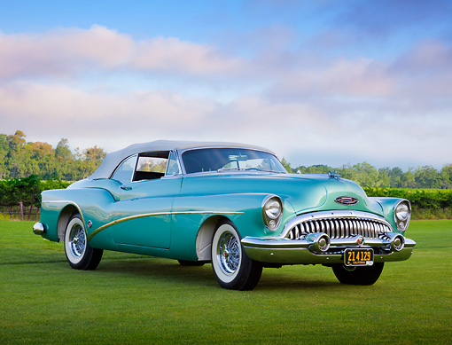 AUT 21 RK3130 01 © Kimball Stock 1953 Buick 76X Skylark Pinehurst Green 3/4 Front View On Grass By Vineyard
