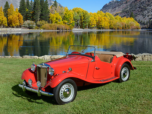 AUT 21 RK3374 01 © Kimball Stock 1953 MG TD Red 3/4 Front View On Grass By Pond And Autumn Trees