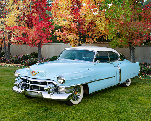 AUT 21 RK3381 01 © Kimball Stock 1950 Cadillac Series 61 Coupe Light Blue 3/4 Front View On Grass By Autumn Trees