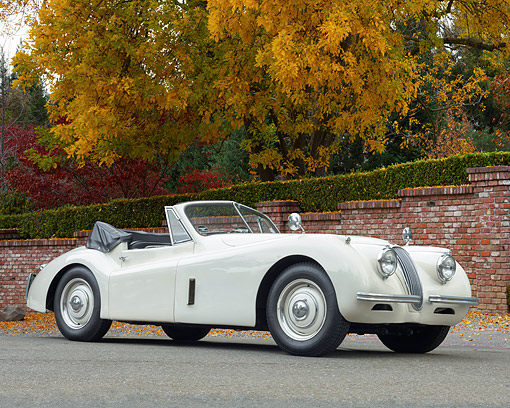 AUT 21 RK3634 01 © Kimball Stock 1953 Jaguar XK120 Drophead Coupe 3/4 Front View On Pavement