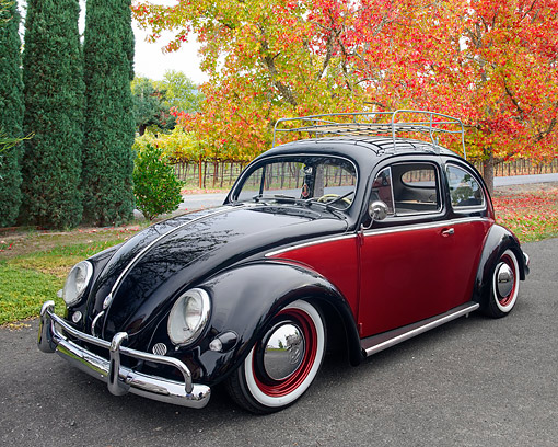 AUT 21 RK3646 01 © Kimball Stock 1957 Volkswagen Beetle Fender Edition Black And Red 3/4 Front View By Trees And Vineyard