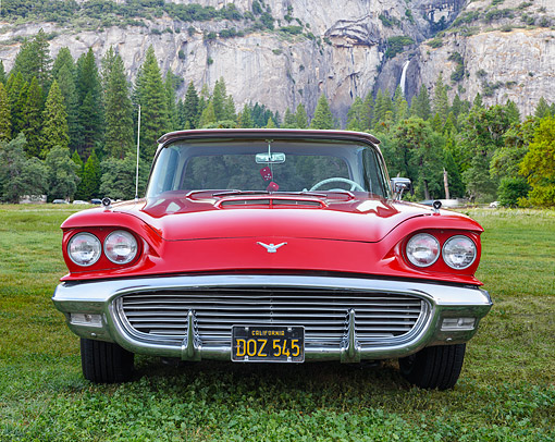 AUT 21 RK3657 01 © Kimball Stock 1958 Ford Thunderbird Red Front View On Grass By Mountains