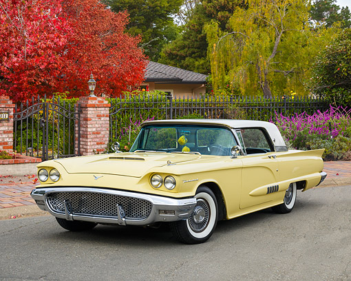 AUT 21 RK3677 01 © Kimball Stock 1958 Ford Thunderbird Yellow 3/4 Front View By House