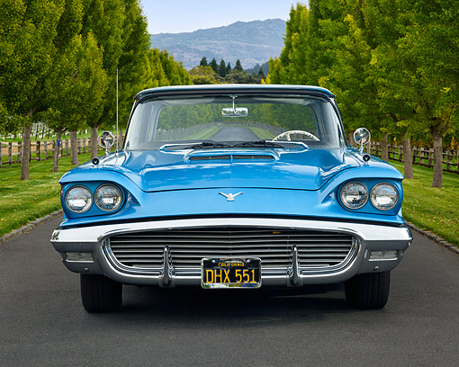 AUT 21 RK3689 01 © Kimball Stock 1959 Ford Thunderbird Seaform Blue Front View By Trees