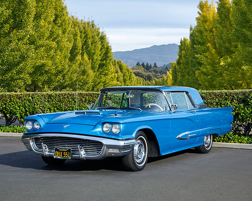 AUT 21 RK3690 01 © Kimball Stock 1959 Ford Thunderbird Seaform Blue 3/4 Front View By Trees