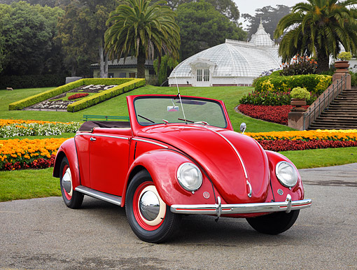 AUT 21 RK3755 01 © Kimball Stock 1950 Volkswagen Type 14A Hebmuller Cabriolet Red 3/4 Front View By Palm Trees