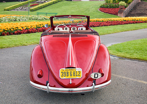 AUT 21 RK3756 01 © Kimball Stock 1950 Volkswagen Type 14A Hebmuller Cabriolet Red Rear View By Grass And Flowers