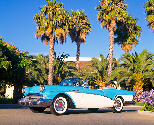 AUT 21 RK0086 01 © Kimball Stock 1957 Buick Special Converitble Blue & White Lower 3/4 Front View On Pavement By Palm Trees