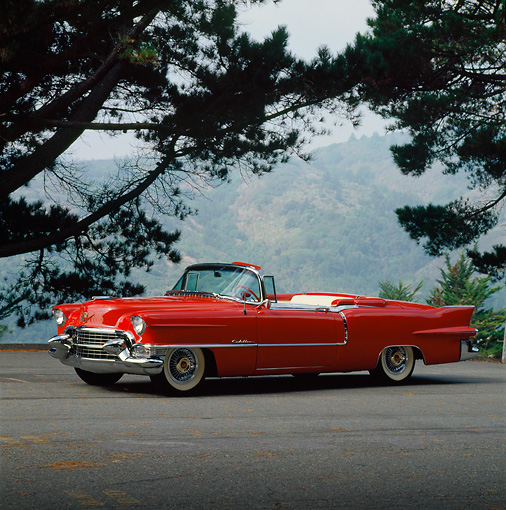 AUT 21 RK0199 07 © Kimball Stock 1955 Red Cadillac Convertible 3/4 Side View On Pavement By Trees