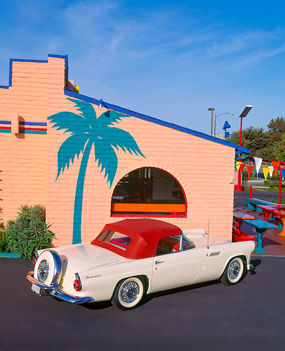 AUT 21 RK0371 05 © Kimball Stock 1956 Ford White T-Bird With Red Top Overhead 3/4 Rear By Palm Tree On Side Of Building Blue Sky