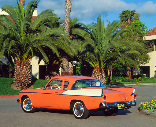 AUT 21 RK0393 03 © Kimball Stock 1958 Orange Studebaker Commander 3/4 Rear View On Pavement By Palm Trees