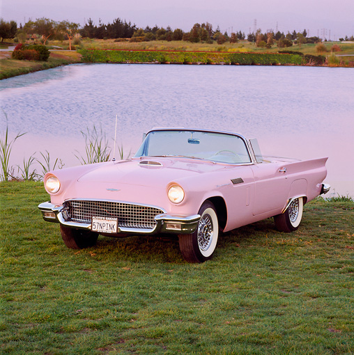 AUT 21 RK0421 04 © Kimball Stock 1957 Ford Pink T-Bird Convertible Front 3/4 View On Grass By Lake Headlights On At Dusk