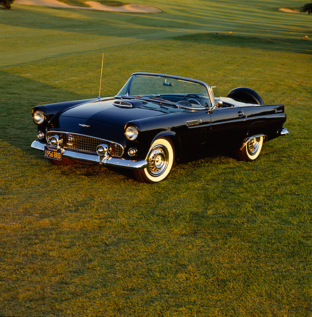 AUT 21 RK0426 04 © Kimball Stock 1956 Ford T-Bird Convertible Black 3/4 Front View On Grass