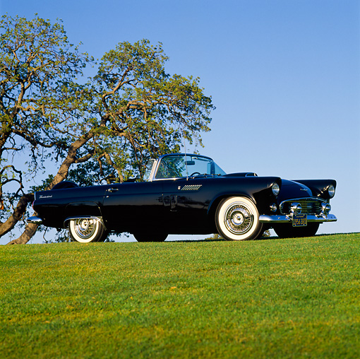 AUT 21 RK0428 02 © Kimball Stock 1956 Ford T-Bird Convertible Black 3/4 Front View On Grass Hill Trees And Blue Sky