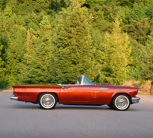 AUT 21 RK0435 09 © Kimball Stock 1957 Cinnamon Ford T-Bird Convertible Side View On Pavement By Trees