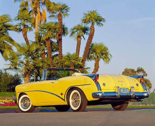 AUT 21 RK0661 05 © Kimball Stock 1954 Buick Skylark Model 100 Convertible Yellow Low 3/4 Rear View On Pavement By Palm Trees Blue Sky