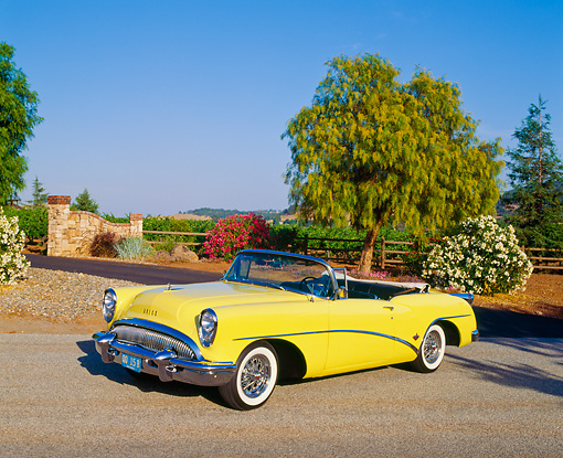 AUT 21 RK0667 10 © Kimball Stock 1954 Buick Skylark Model 100 Convertible Yellow 3/4 Front View On Pavement by Trees And Flower Bush Blue Sky