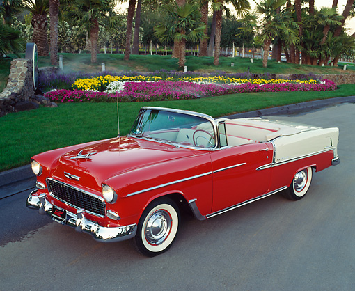 AUT 21 RK0776 01 © Kimball Stock 1955 Chevrolet Bel Air Convertible Red Low 3/4 Side View On Pavement By Palm Trees