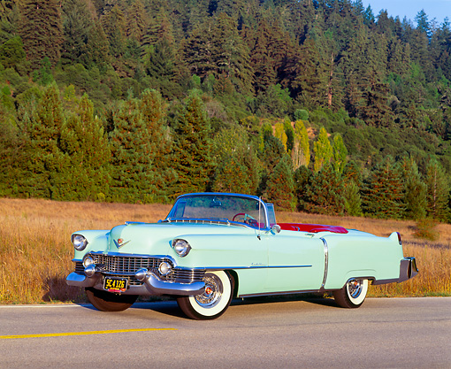 AUT 21 RK0810 07 © Kimball Stock 1954 Cadillac Convertible Light Green 3/4 Side View On Road By Dry Grass And Trees