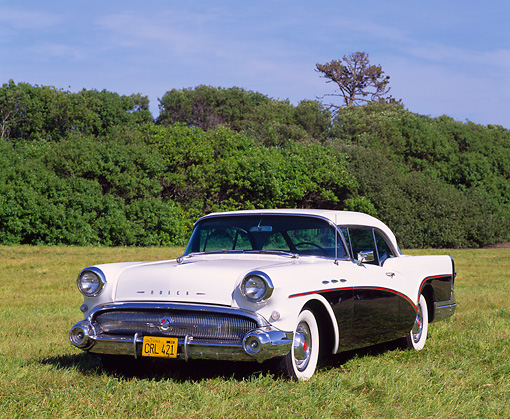 AUT 21 RK0911 06 © Kimball Stock 1957 Buick Special Black And White 3/4 Front View On Grass By Trees Blue Sky