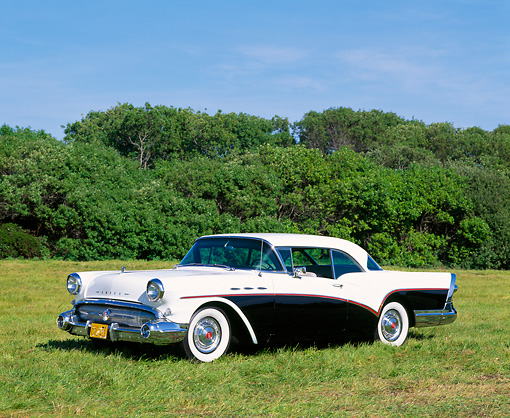 AUT 21 RK0912 01 © Kimball Stock 1957 Buick Special Black And White 3/4 Side View On Grass By Trees Blue Sky