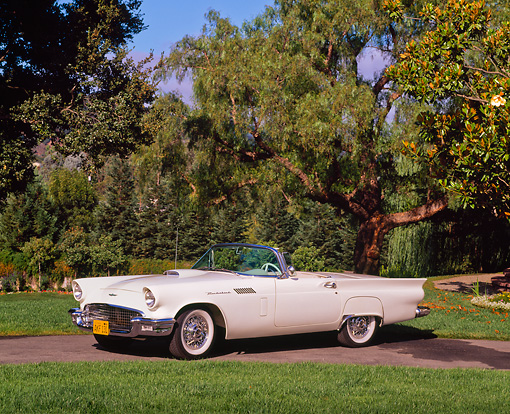 AUT 21 RK1102 02 © Kimball Stock 1957 Ford T-Bird Convertible White 3/4 Side View By Grass And Trees