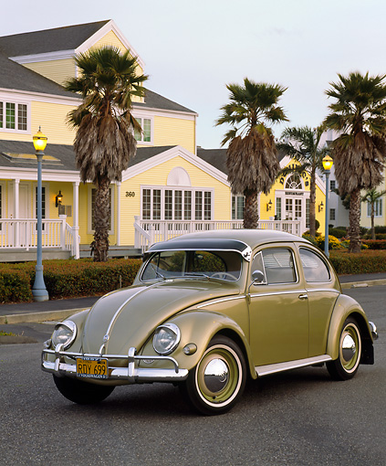 AUT 21 RK1178 03 © Kimball Stock 1957 Volkswagen Beetle Green 3/4 Front View On Pavement By Palm Trees And Building