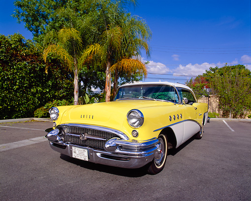 AUT 21 RK1717 12 © Kimball Stock 1955 Buick Century Yellow And White 3/4 Front View On Pavement By Trees