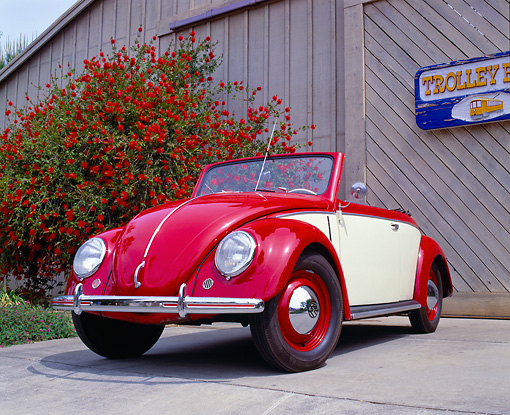 AUT 21 RK1721 02 © Kimball Stock 1950 VW Hebmuller Bug Convertible Red And Cream Low 3/4 Front View On Pavement By Red Bush
