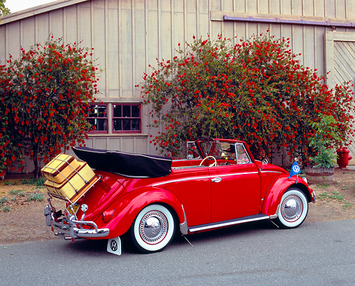 AUT 21 RK1725 03 © Kimball Stock 1956 VW Beetle Convertible Custom Red 3/4 Rear View On Pavement By Red Bush