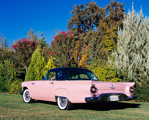 AUT 21 RK1795 01 © Kimball Stock 1957 Ford Thunderbird Pink Rear 3/4 View On Grass By Trees