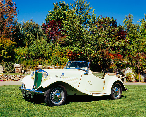 AUT 21 RK1934 02 © Kimball Stock 1952 MG TD Roadster Yellow Side 3/4 View On Grass By Trees