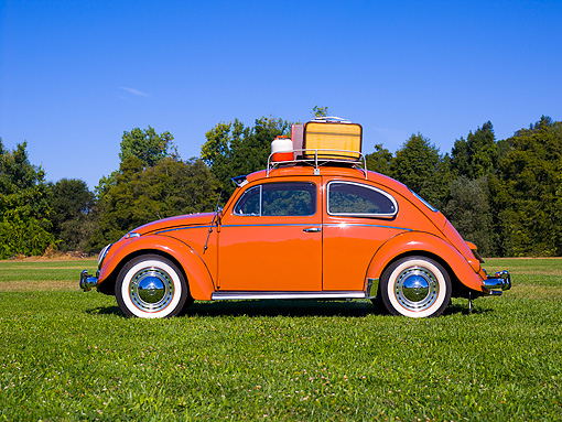 AUT 21 RK2030 01 © Kimball Stock 1958 Volkswagen Beetle Coral Profile View On Grass Trees Background
