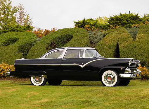 AUT 21 RK2118 01 © Kimball Stock 1955 Ford Crown Victoria Black Front 3/4 View On Grass By Shrubs Tree Sky