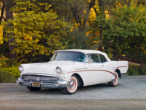 AUT 21 RK2295 01 © Kimball Stock 1957 Buick Roadmaster Convertible White 3/4 Front View On Road By Trees
